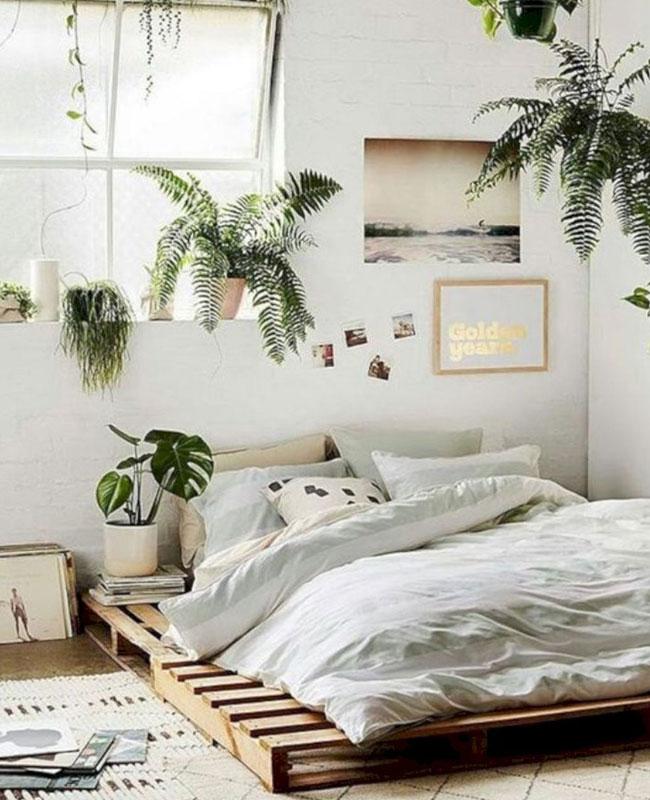 deco chambre nature plante