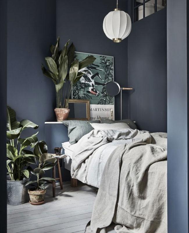 deco cosy nature chambre bleu plante