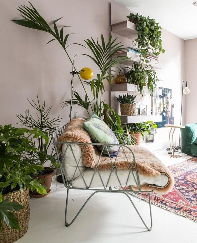 deco plante salon nur vegetal etagere