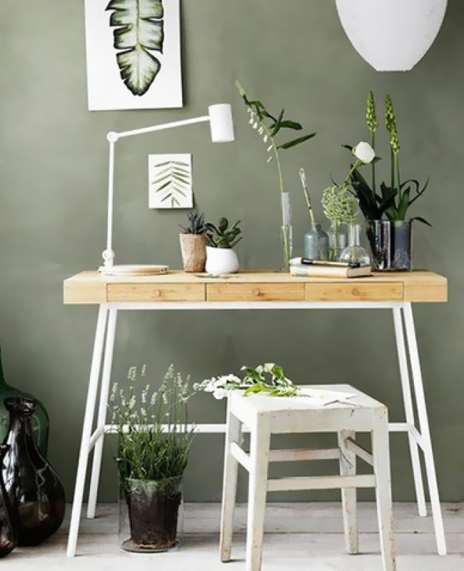 deco bureau nature mur vert sauge