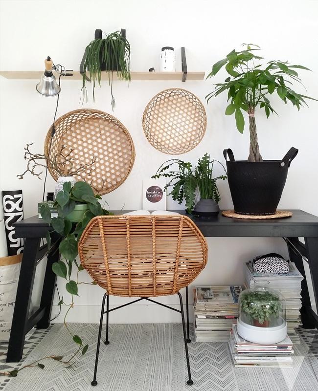 deco bureau tropical rotin plantes