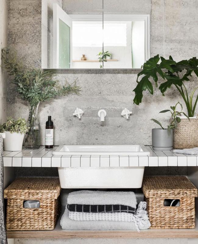 deco salle de bain nature beton plante