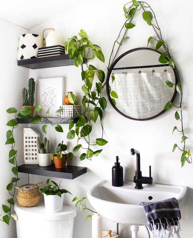 deco salle de bain nature plante