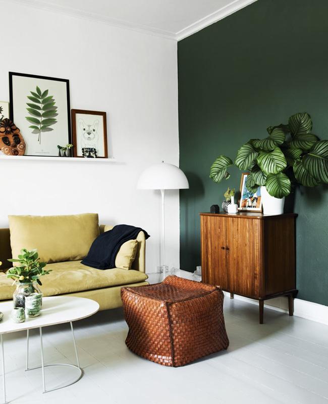 mur vert sapin deco salon