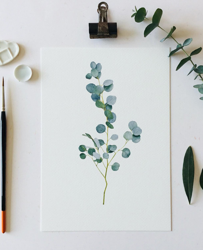 affiche carte vegetale a imprimer eucalyptus