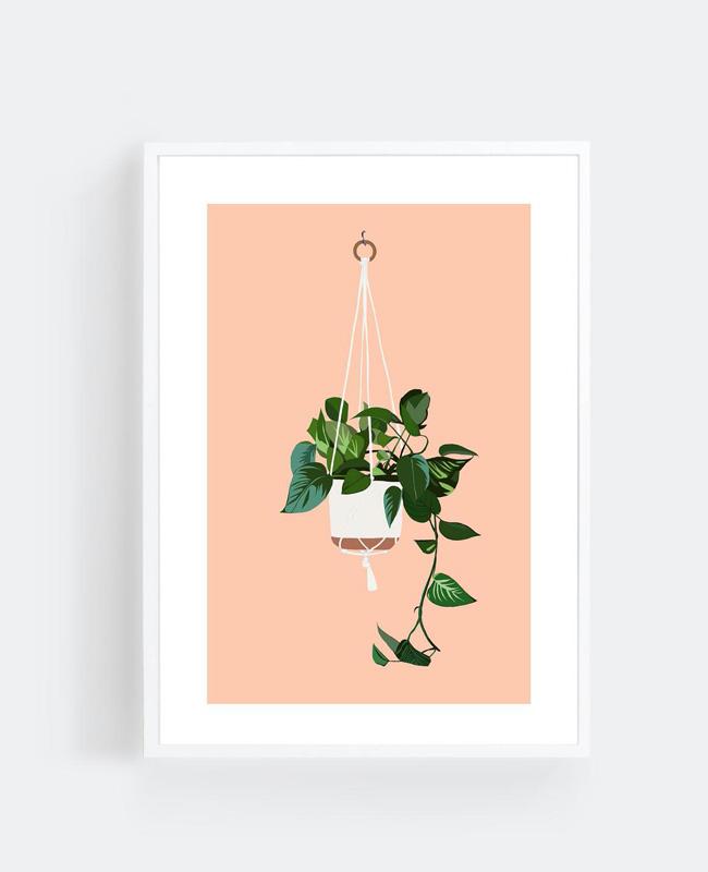 affiche carte vegetale a imprimer plante suspendue