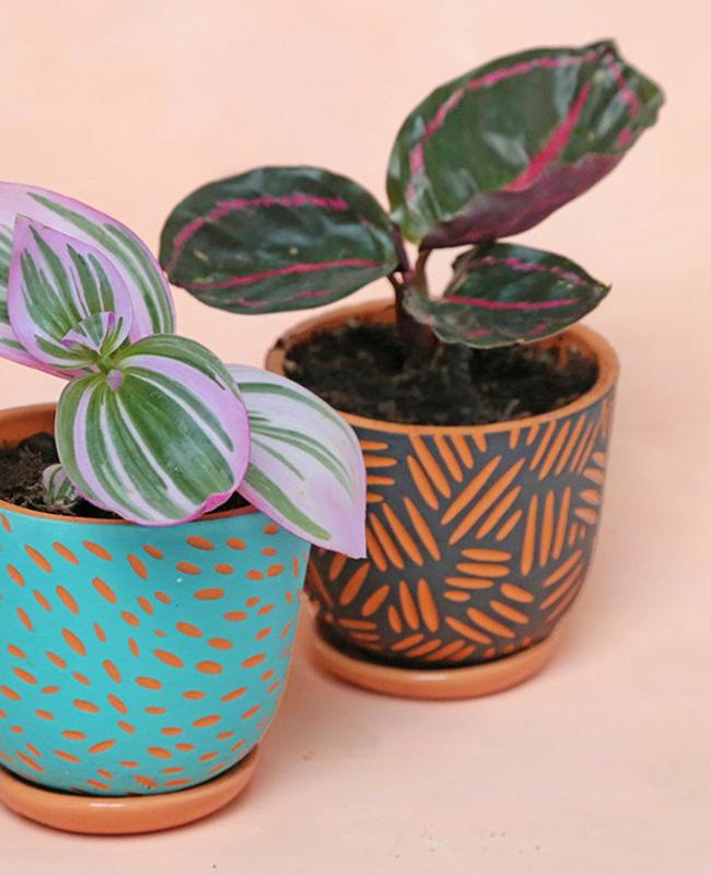 pot terracotta motifs