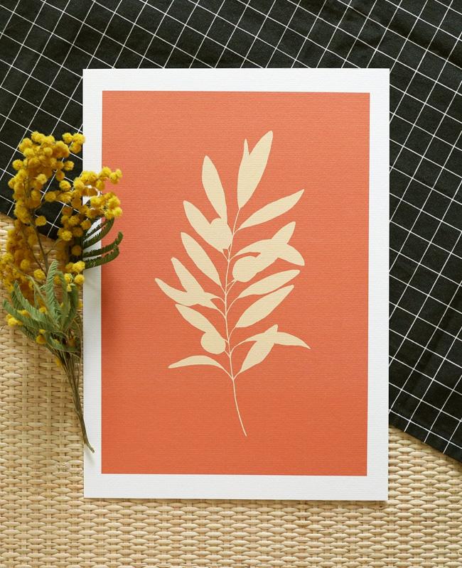 affiche branche olivier terracotta