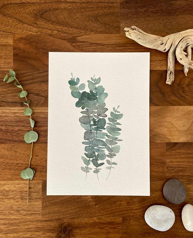 affiche branche eucalyptus