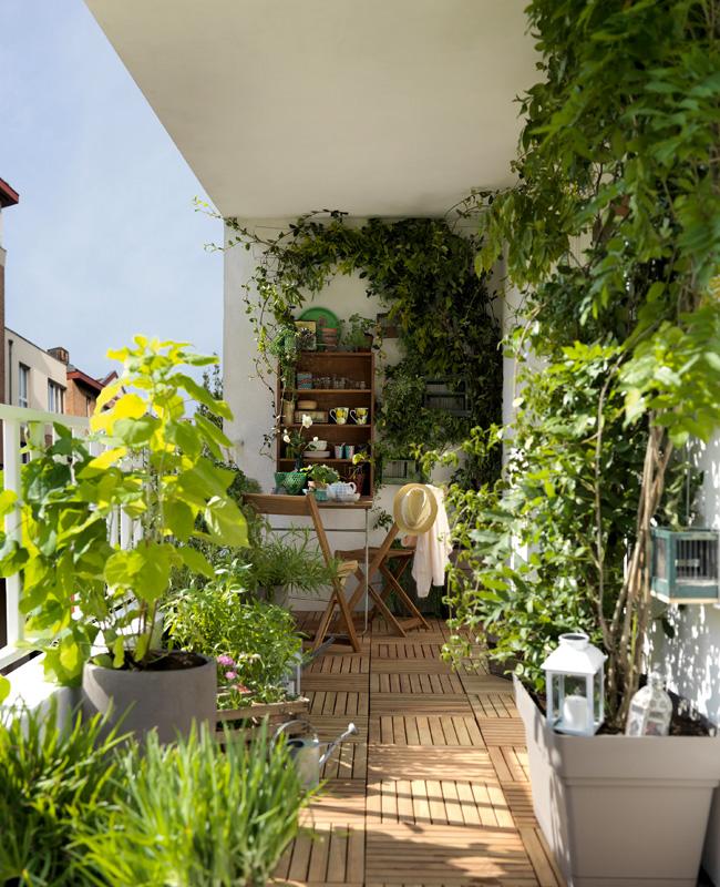 deco balcon nature plante