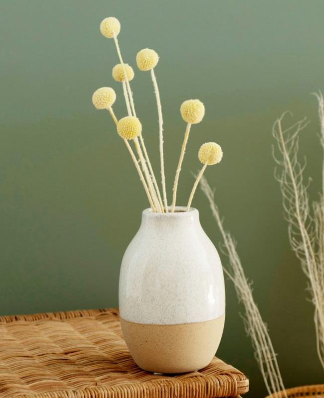 fleurs sechees boules jaunes
